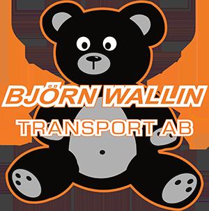 Björn Wallin